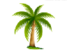 13157792591532494773palm-tree-hi